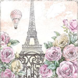 Paris Roses VI by Beth Grove