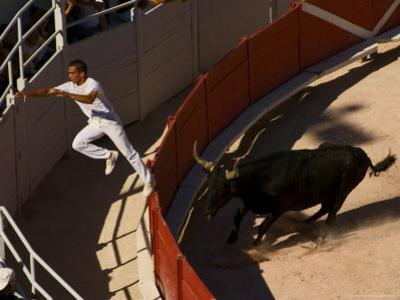 Man Jumping Fence During Bull Race at Les Arenes Roman Amphitheatre by Bethune Carmichael