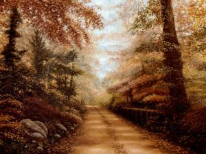 The Road to Shepherd Lake by Betsy Brown