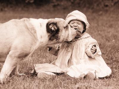 Kisses N Licks by Betsy Cameron