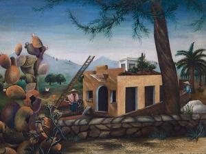 Building a House in Spain, Cactus, 1953 by Bettina Shaw-Lawrence