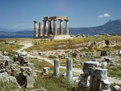 Distant View of the Temple of Apollo at Corinth by Bettmann