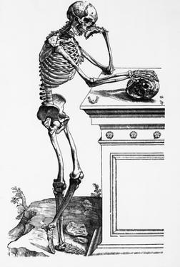 Print of a Skeleton Contemplating a Skull by Bettmann