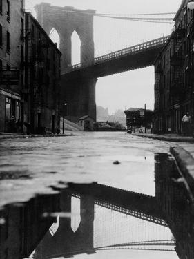 Puddle Reflecting Brooklyn Bridge by Bettmann