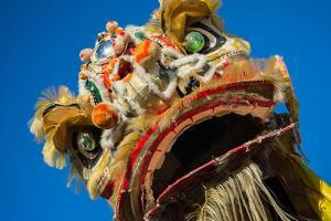 Chinese Dragon during Golden Dragon Parede. by bettorodrigues