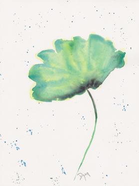 Blue Green Poppy 2 by Beverly Dyer