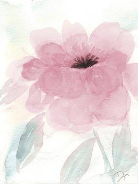 Blush Peony I by Beverly Dyer