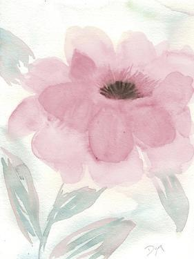 Blush Peony II by Beverly Dyer