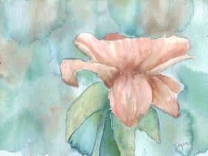 Blush Rose 2 by Beverly Dyer