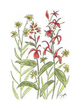Cardinal Flower by Beverly Dyer