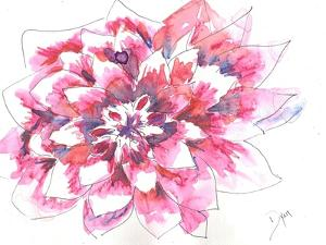 Dahlia by Beverly Dyer