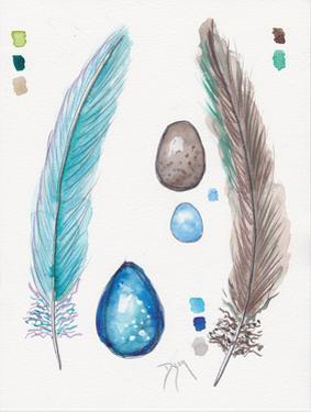 Feather and Egg Study 2 by Beverly Dyer