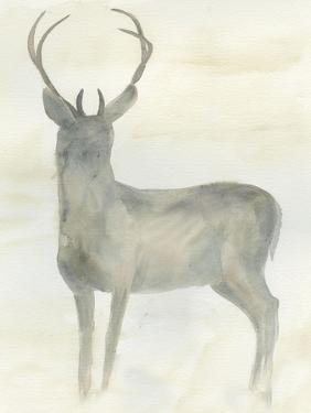 Solo Deer 2 by Beverly Dyer