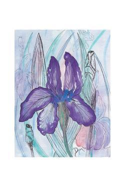 Violet Iris by Beverly Dyer