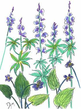 Wild Lupine by Beverly Dyer