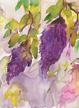 Wisteria I by Beverly Dyer