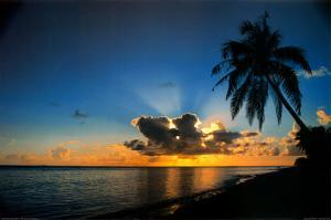 Sunrise Paradise by Beverly Factor
