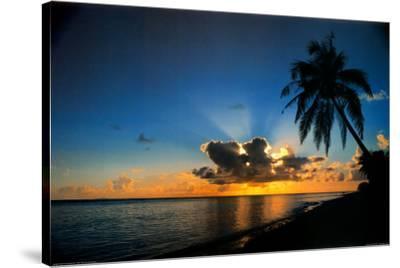 Sunrise Paradise