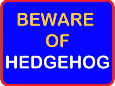 Beware of Hedgehog