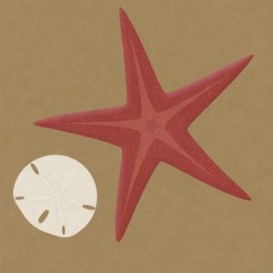 Summer Fun: Starfish by BG^Studio