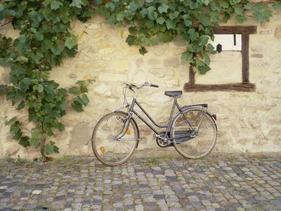 https://imgc.allpostersimages.com/img/posters/bicycle-turckheim-france-99_u-L-Q1AHQNH0.jpg?p=0