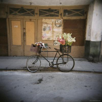 https://imgc.allpostersimages.com/img/posters/bicycle-with-flowers-in-basket-havana-centro-havana-cuba-west-indies-central-america_u-L-P2QSMD0.jpg?p=0