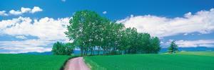 Biei-Cho Hokkaido Japan
