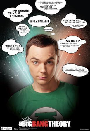 Big Bang Theory Sheldon Quotes Television Poster