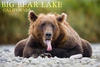 https://imgc.allpostersimages.com/img/posters/big-bear-lake-california-grizzly-bear-with-tongue_u-L-Q1GQNEU0.jpg?artPerspective=n