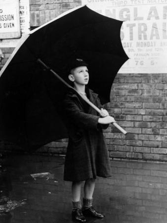 Big Brolly