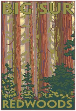 Big Sur, California - Redwoods