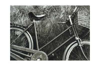 https://imgc.allpostersimages.com/img/posters/bike-i_u-L-Q10ZQCL0.jpg?artPerspective=n