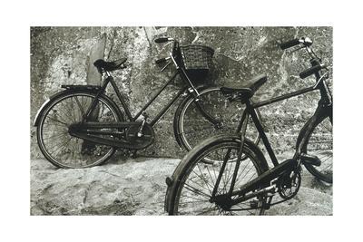 https://imgc.allpostersimages.com/img/posters/bike-ii_u-L-Q10ZQE20.jpg?artPerspective=n