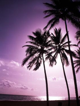 Beach Scene at Sunset by Bill Bachmann