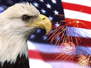 Eagle, Firework, Patriotism in the USA by Bill Bachmann