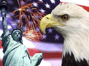 Eagle, Fireworks, Statue of Liberty by Bill Bachmann