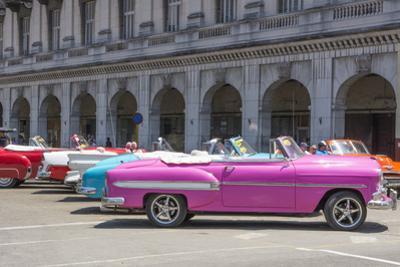 Havana, Cuba. Colorful classic 1950's cars on display. by Bill Bachmann