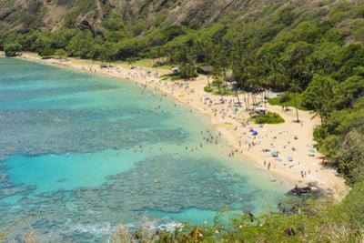 Honolulu, Hawaii, Oahu. Reef at Hanauma Bay coral from above snorkelers beach by Bill Bachmann