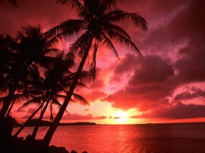 Palms And Sunset at Tumon Bay, Guam