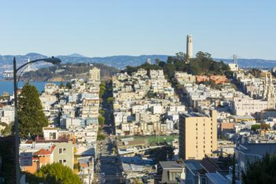 San Francisco, California, hills of the city and Coit Tower in sunshine. by Bill Bachmann