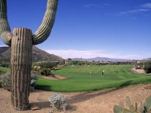 The Boulders Golf Course, Phoenix, AZ by Bill Bachmann