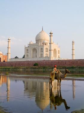 Young Boy on Camel, Taj Mahal Temple Burial Site at Sunset, Agra, India by Bill Bachmann