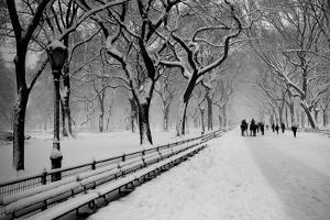 Central Park Snow by Bill Carson Photography