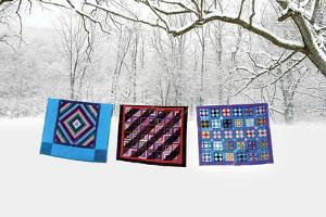 Winter Quilts by Bill Coleman