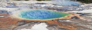 Thermophile bacterial mats and steam rising from hotspring, Midway Geyser Basin by Bill Coster