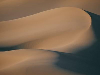 A Close View of Sand Dunes by Bill Curtsinger