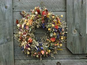 A Delicate Dried Flower Wreath Adorns a Wooden Wall Near a Window by Bill Curtsinger