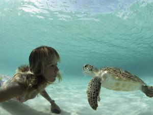 A Young Woman Swimming Face-To-Face with a Green Sea Turtle by Bill Curtsinger