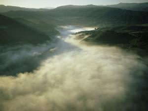An Aerial View of a Fog-Filled Valley on the Monterey Peninsula by Bill Curtsinger