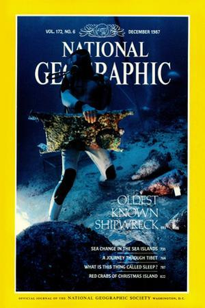 Cover of the December, 1987 National Geographic Magazine by Bill Curtsinger